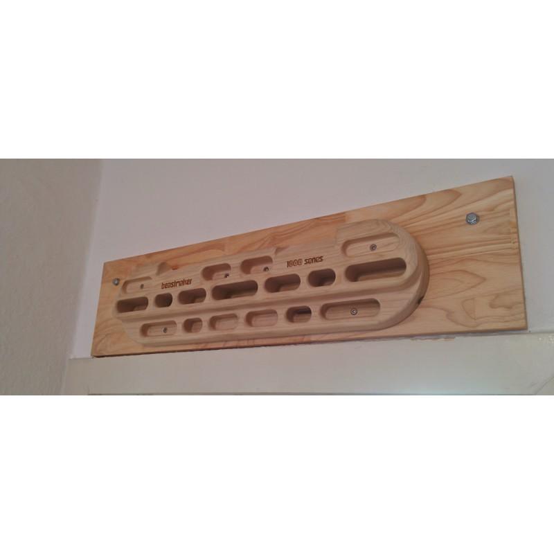 Bild 1 von Daniel zu Beastmaker - 1000 Series - Trainingsboard