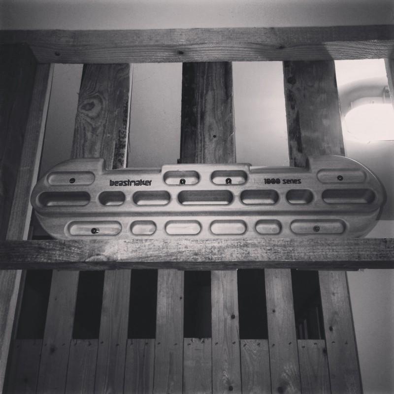 Bild 1 von Julia zu Beastmaker - 1000 Series - Trainingsboard
