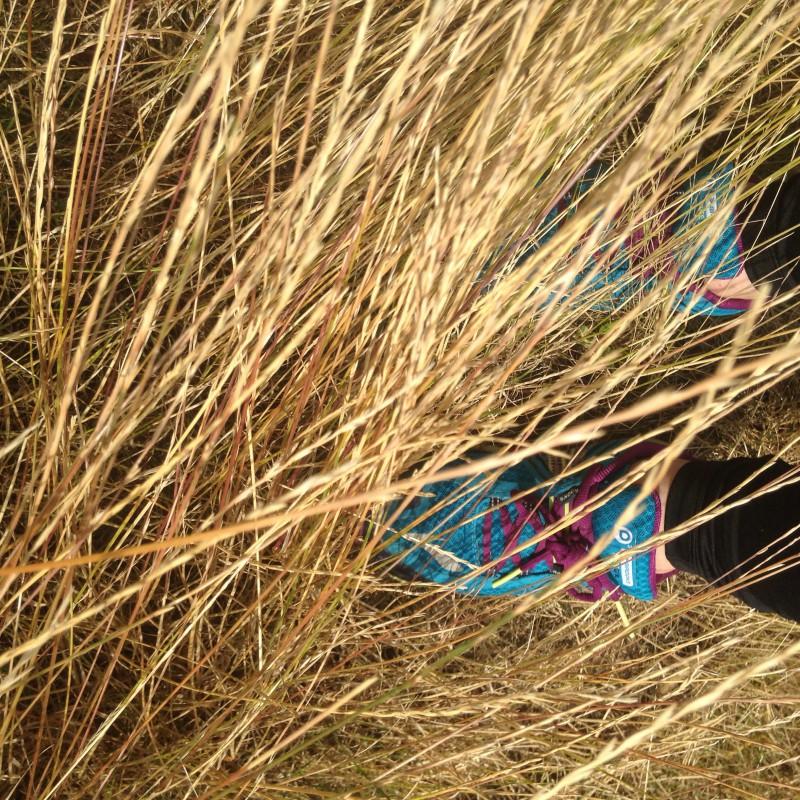 Bild 1 von Hayley zu Brooks England - Women's Puregrit 3 - Trailrunningschuhe