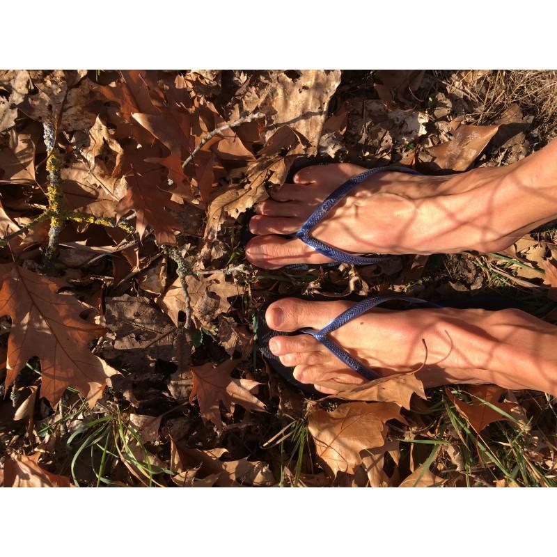 Bild 1 von Barbara zu Havaianas - Women's Slim - Sandalen