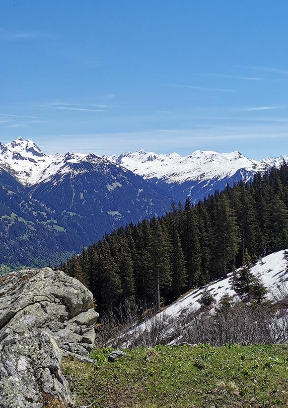 Bergfreunde Klimaneutralität