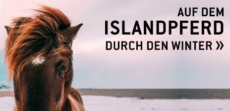 Auf dem Islandpferd durch den Winter